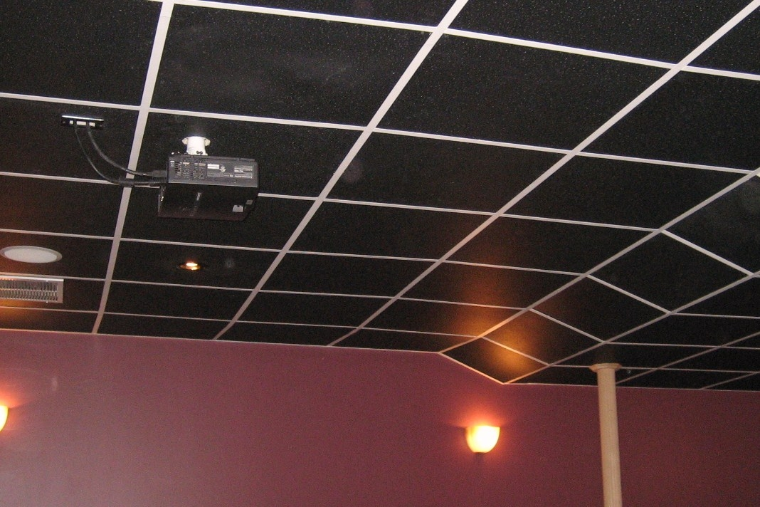 Black Ceiling Panels