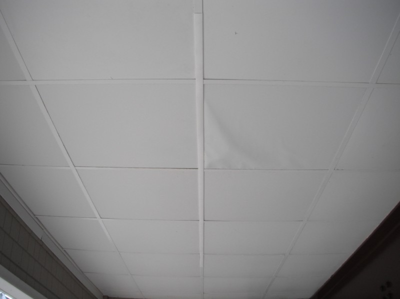 Ceiling Grid Covers Photo Gallery