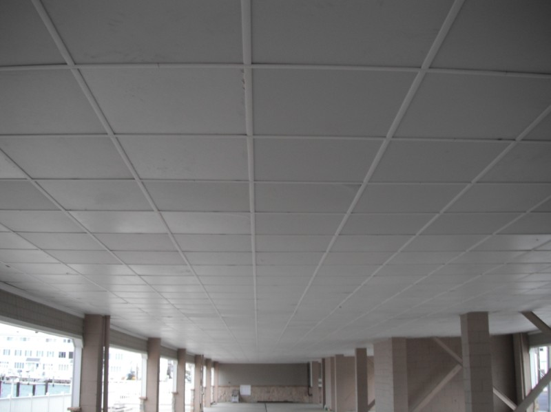 Perfect Ceiling Grid Covers At Wholesale Price Isc
