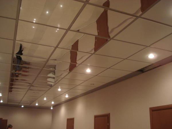 Mirror Ceiling Panels Intersource Specialties Co